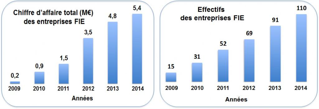 FIE Statistiques 2014